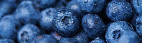 8 Manfaat dan Khasiat Blueberry Bagi Kesehatan