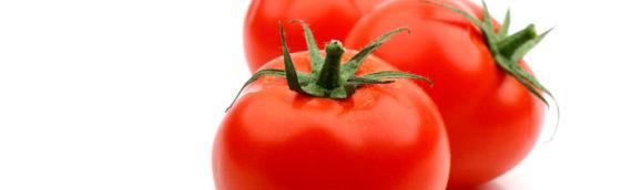 Tomat Si merah kaya akan Lycopene