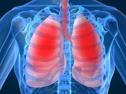 cara mencegah penularan TBC