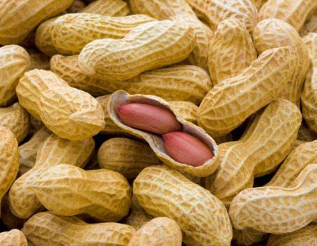 Diet Sehat Pakai Kacang Tanah, Mau?