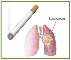 makanan penyebab kanker paru paru