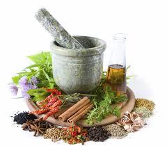 sejarah obat herbal atau tradisional