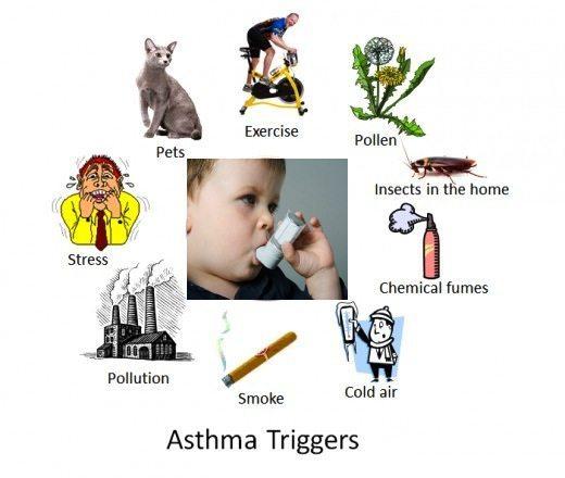 pantangan untuk penderita asma