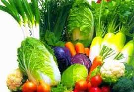 makanan sehat pencegah kanker usus